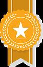 yellow badge.png