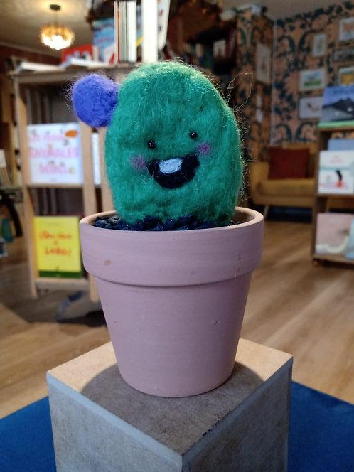 Cactus / Juanamatú
