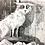 Thumbnail: Los imaginarios / Harrold y Gravett