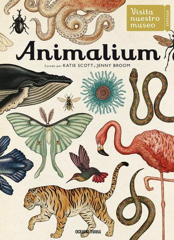 Animalium / Katie Scott y Jenny Broom