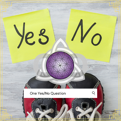 10 Yes/No Question