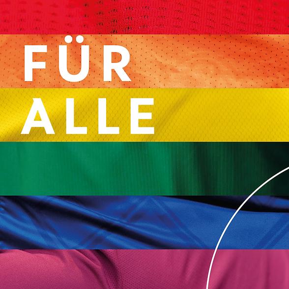 DFB_Vielfalt.png