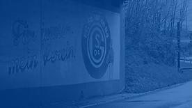 Schalke_HG.png