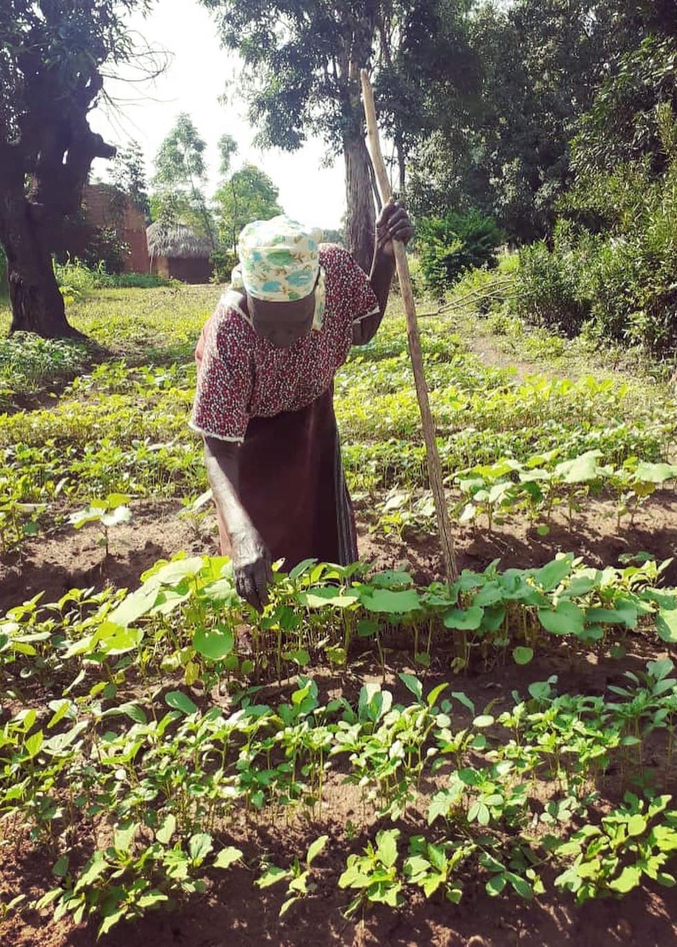 Grandmother in her garden 2.jpeg