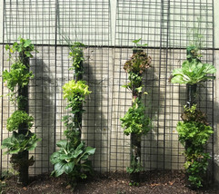vertical tiny gardens.jpeg