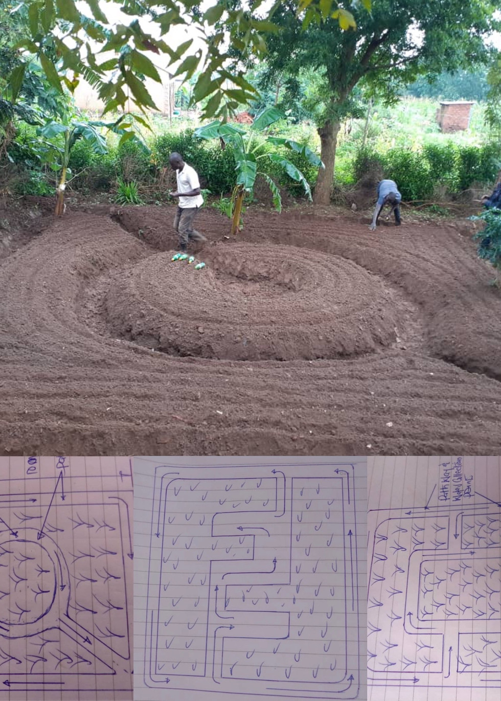 Refarmers garden planning .jpeg