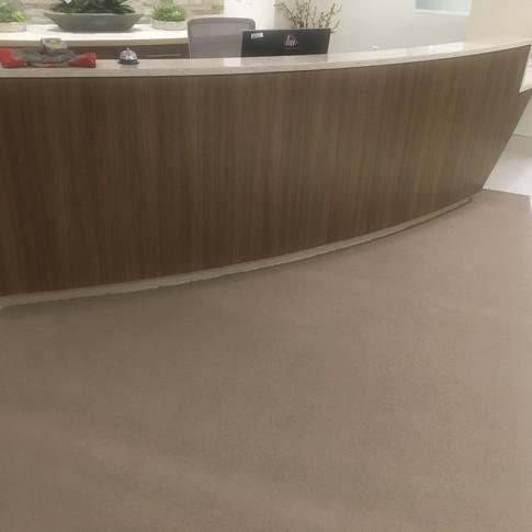 Custom 1 piece carpet mat.JPG