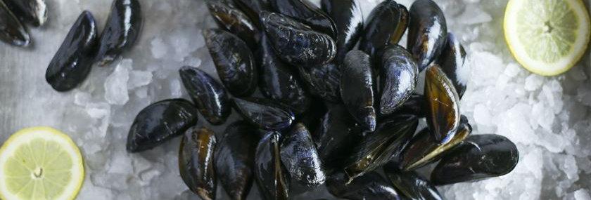 Cornish Mussels 1kg