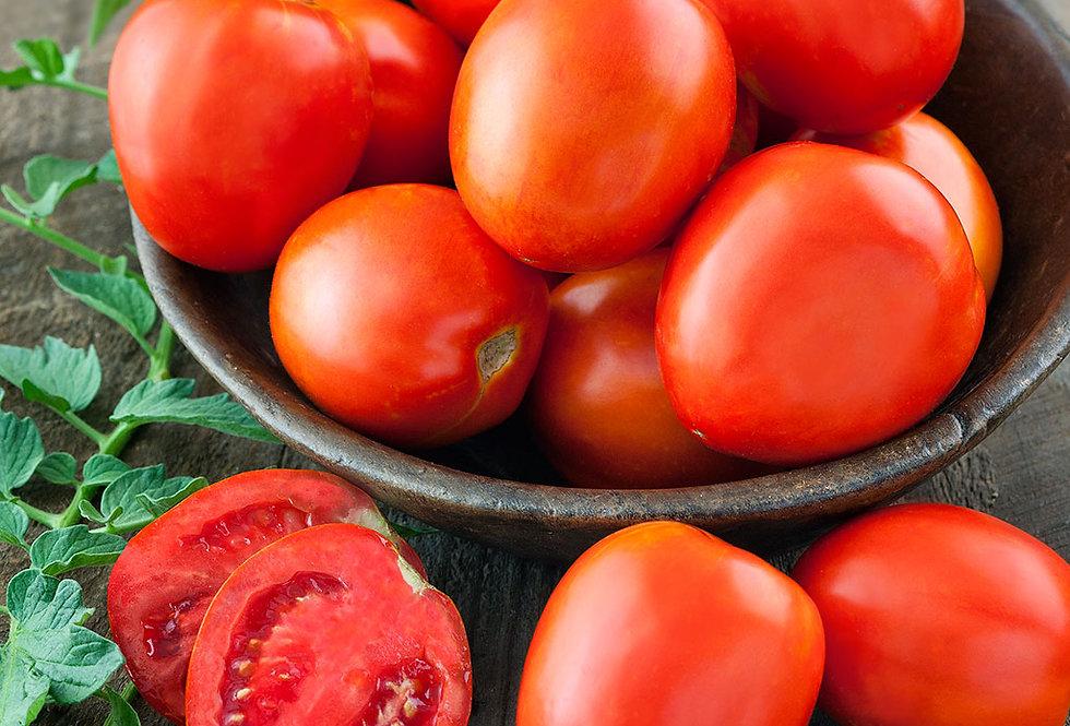 Six plum tomatoes