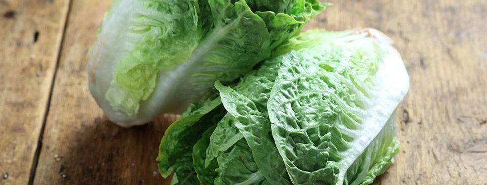 Little gem lettuce (pack of 2)