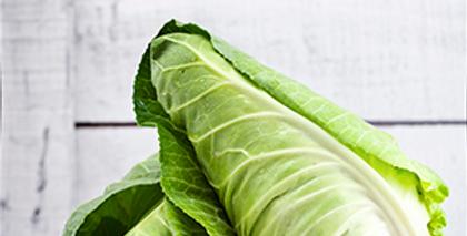 Hispi Cabbage (each)
