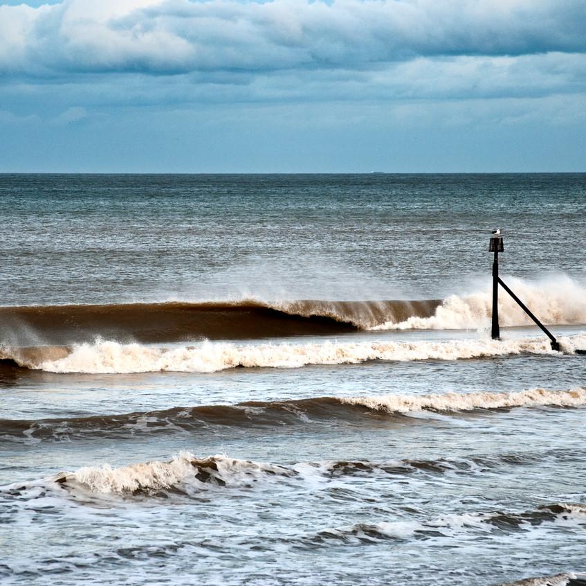 Norfolk Surf