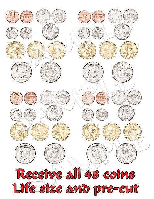 48 Edible life-size coins
