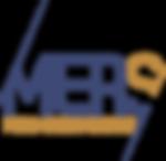 MERS Premium Razor Supplier and Manufacturer