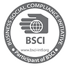 BSCI certified razor blade factory