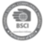 BSCI Certified Razor Factory