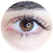 website eyelash-05.png