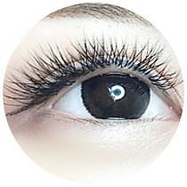 website eyelash-01.png