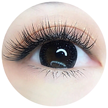 website eyelash-02.png