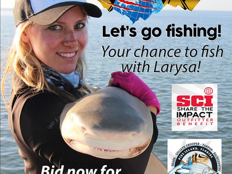 Sharks & Goliath Grouper with Larysa Switlyk Goes to the Highest Bidder for SCI Outfitter Benefit!