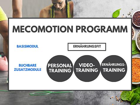 Programm Mecomotion Grafik-3.png