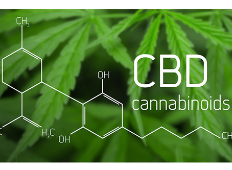 CBD Hemp: What Is It, How Does It Work, and What Are Its Benefits