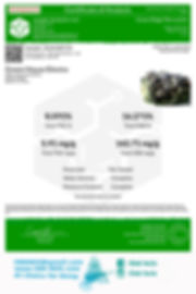 Green House Electra.jpg