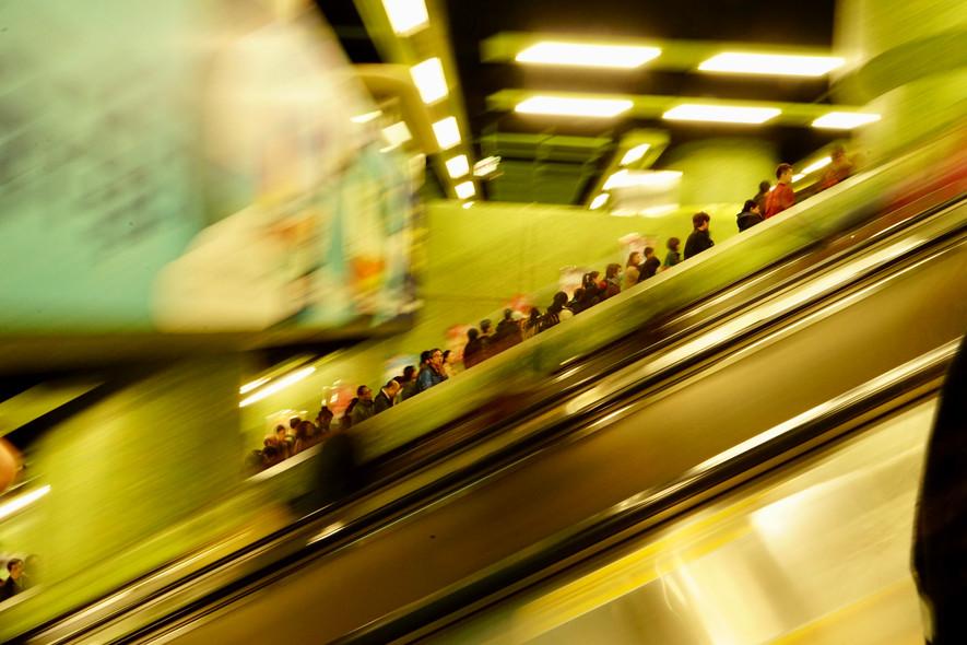 Following the Crowd / Sürünün Takibi / H