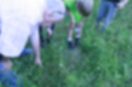 Man pointing at grass with children