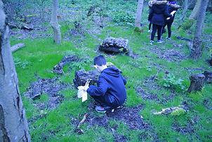 Boy looking under a log