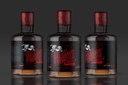 Ancame Balsamic Vinegar bottle 1600x1067px 01