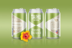 Taihu beer can 1600x1067px 02