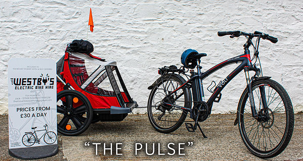 THE PULSE.jpg