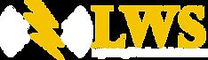 lightening wireless logo.png