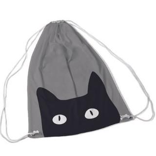 cat bag.jpg