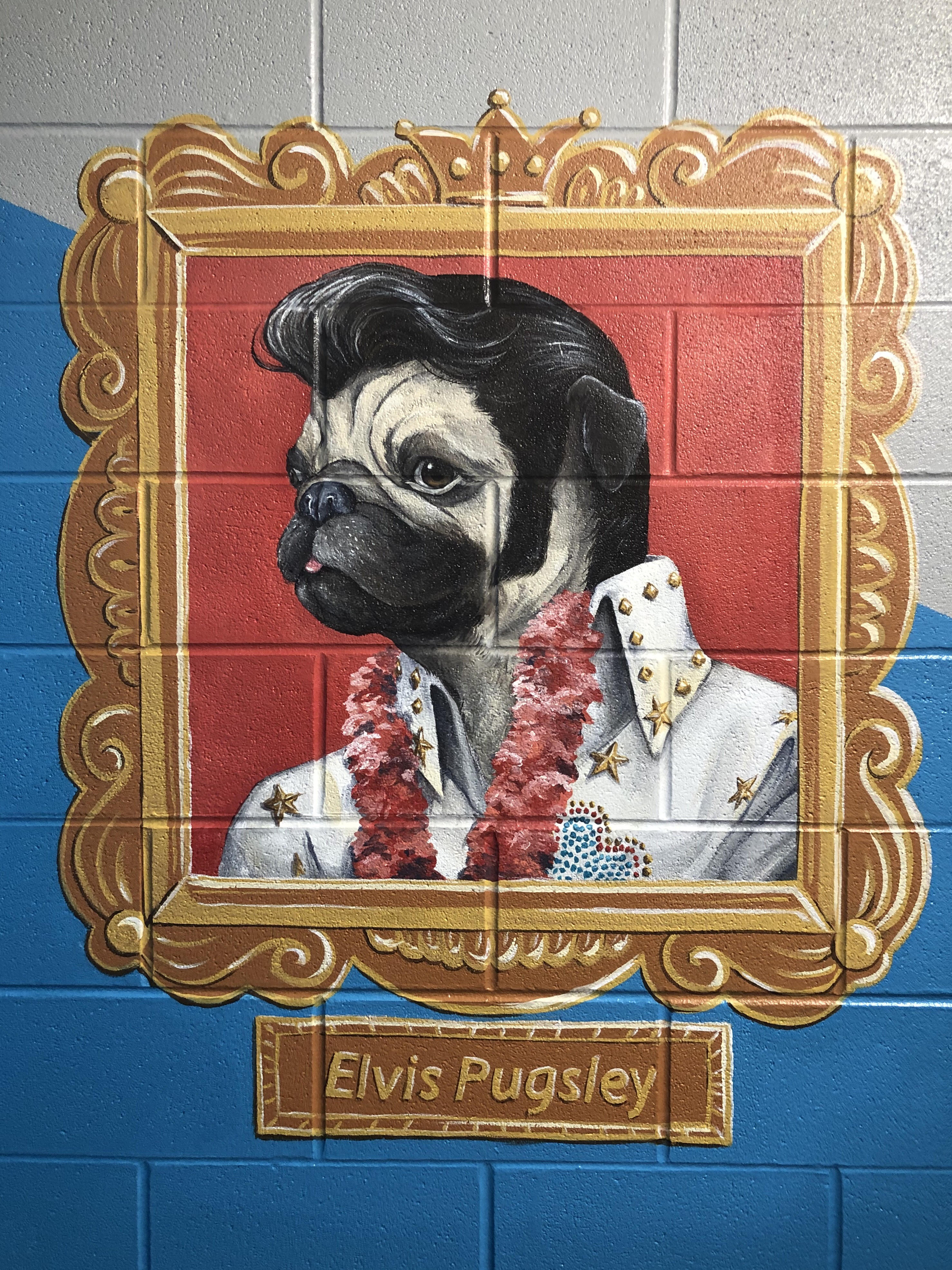 ElvisPugsley