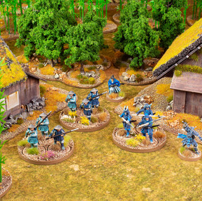 Crane-Warband.jpg