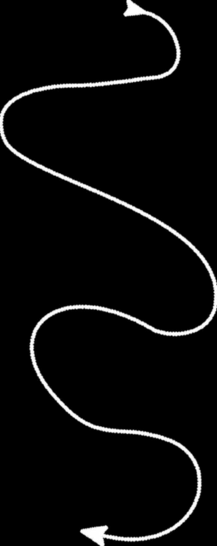 linha pontilhada-branca.png