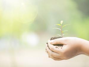 מדעים - חוקרים טבע בטבע - רמת הנדיב