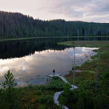 Calm Evening at Herman Lake