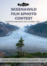 SWFF2019-submissions open poster.jpg