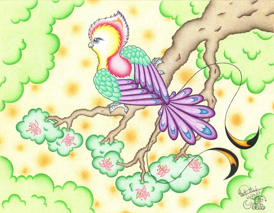 paradise_parrot-small.jpg