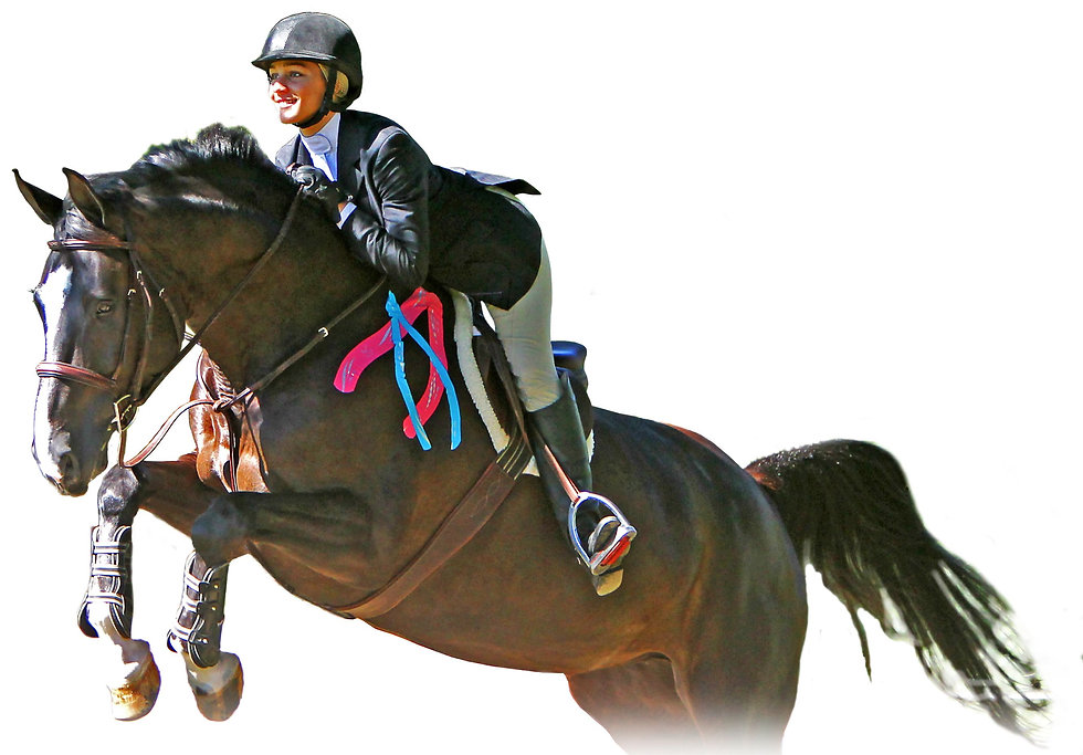 Image Jumping horse with tape .jpeg