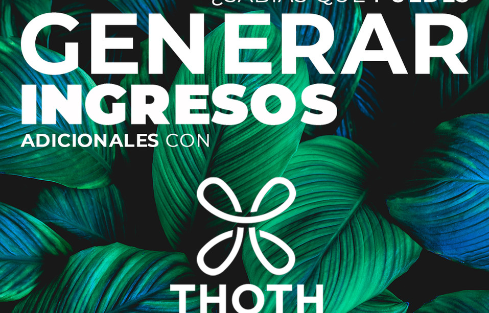 Programa Thoth Hair Profesional 1