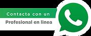 whatsapp en linea.png