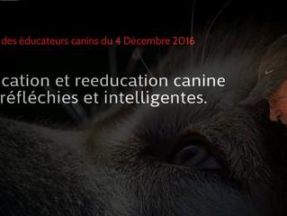 Réunion des éducateurs canins du 4 Décembre 2016 à Lyon