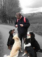 Formation éducateur canin Est