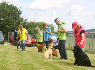 Formation éducateur canin Alsace