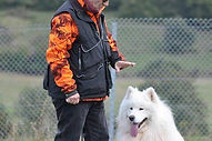 Formation éducateur canin 67
