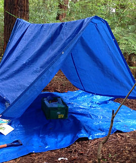 TRP_CAMPOUT_IMG_9876.JPG